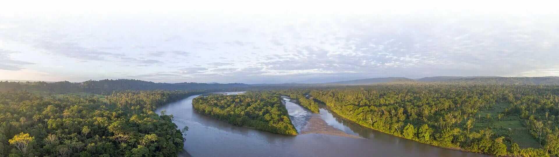 ecuador amazon rainforest banner